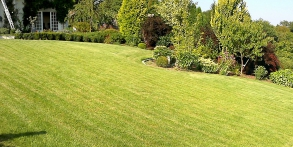 původní zahrada